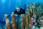 Dave diving in Curacao